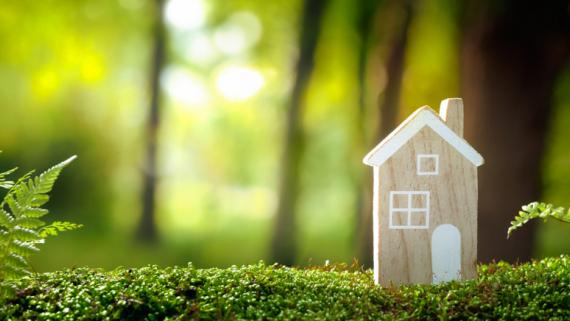 Drewno w budownictwie drogą do osiągnięcia neutralności klimatycznej